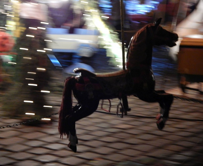 Véghelyi Ágnes: Sötétben minden ló fekete. Még a faló is :)