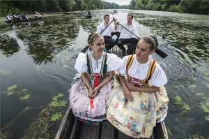 A hagyomány szerint legények zöld ágakkal feldíszített ladikokkal a Sugovica partján sétálgató lányokat hívták csónakázni. (MTI Fotó: Ujvári Sándor)