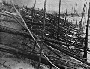 19 évvel a becsapódás után is döbbenetes volt a látvány - Leonid Kulik expedíciója - (1927)