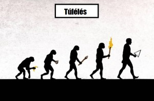 evolúció2