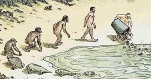 evolúció27