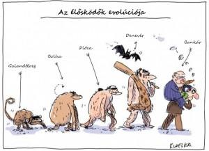 evolució_vicces