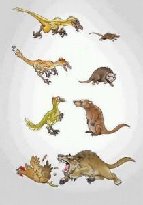 evolucios_