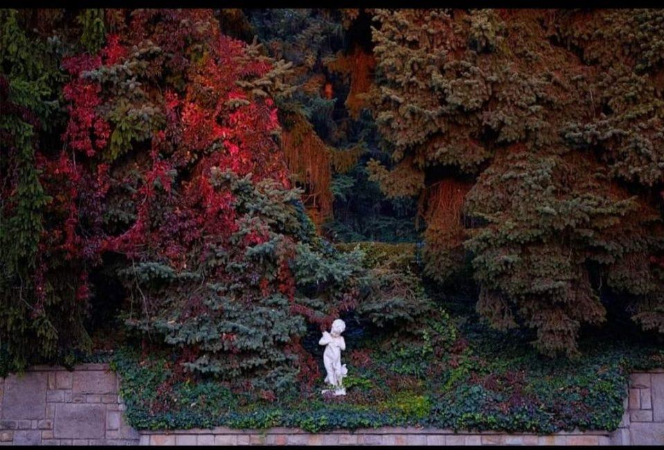 Ismeretlen szerző: Őszi hangulat – Gyepes Lajos gyűjtése