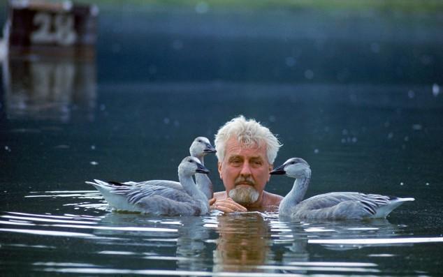 1903. november 7-én született KONRAD LORENZ osztrák zoológus, ornitológus